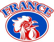 french mascot rooster france Stock Images