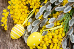 French mimosa and catkins with easter eggs Royalty Free Stock Photography