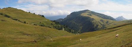 French mountains with green grass and cows. From the Aravis pass - France - The Alps - Panorama Royalty Free Stock Photos