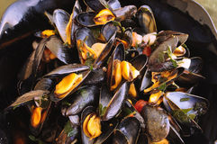 French mussels. French cooked mussels called  moules marinières Royalty Free Stock Photography