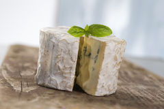 French musty blue cheese from Auvergne Royalty Free Stock Photography