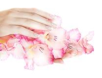 French nails Royalty Free Stock Photo
