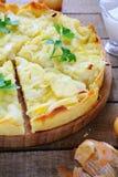 French Onion Cake Stock Image