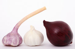French onion, red onion and garlic. Red onion and garlic isolated on white, macro close up with copy-space, copy space Stock Photography