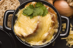 French onion soup with ingredients Stock Images