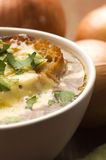 French onion soup with ingredients Stock Photos
