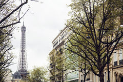 French paris street with Eiffel Tower in perspective trought trees, post card view Stock Images