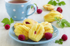 French pastries madeleines Stock Photos