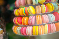 French pastry of different colors Stock Photography