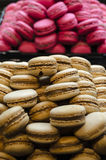 French pastry Stock Images