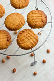 French peanut biscuits Royalty Free Stock Image