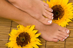 French pedicure Royalty Free Stock Photos
