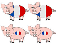 French pig breeding happy Stock Images
