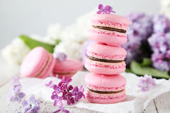 French pink macarons Stock Image