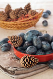 French plum with pinecone Royalty Free Stock Photo