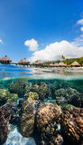 French Polynesia above and bellow water Royalty Free Stock Photo