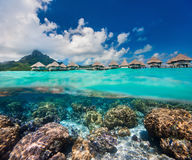 French Polynesia above and bellow water Royalty Free Stock Photos