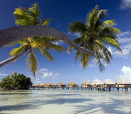 French Polynesia - Island of Mahini Royalty Free Stock Photo