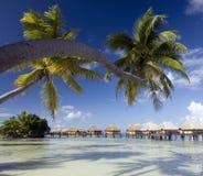 French Polynesia - Island of Mahini Royalty Free Stock Photo