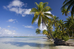 French Polynesia - South Pacific. Idyllic tropical beach and lagoon on the island of Manihi in French Polynesia in the South Pacific stock images