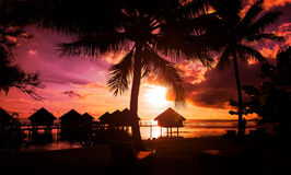 French Polynesia. Tahiti sunset on a sandy beach Stock Image