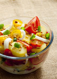 French Potato Salad Royalty Free Stock Photography