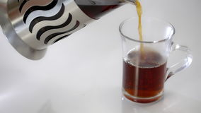French Press with tea, tea is poured in a transparent Cup. On a white background. French Press for coffee or tea with tea, tea is poured in a transparent Cup. On stock footage