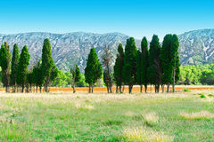 French Provence Royalty Free Stock Photos