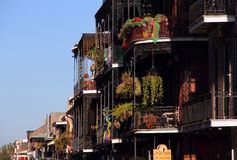 French Quarter Hanging Gardens Royalty Free Stock Images