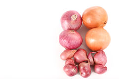 French red shallots and onions on white background - top view Royalty Free Stock Photo