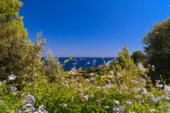 French Riviera. Aerial view of Cap Ferrat, French Riviera Royalty Free Stock Photography