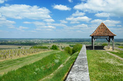 French rural landscape with vineyards Stock Images