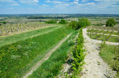 French rural landscape with vineyards Royalty Free Stock Photos