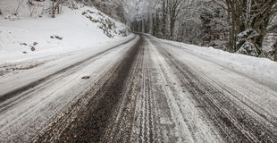 French Rural Road in Winter II Stock Images