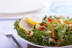French Salad. Closeup salad with French dressing stock image