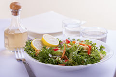 French Salad. Salad with French dressing stock images
