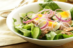 French salad Nicoise - with tuna Royalty Free Stock Photography