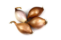 French Shallots Stock Photos