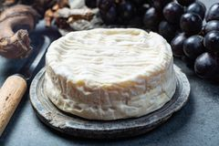 French soft Camembert cheese, original Camembert de Normandie close up stock photography