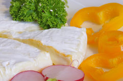 French soft cheese Royalty Free Stock Photography