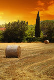 French Straw Field Royalty Free Stock Image