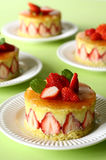 French strawberry cake. 4 individual french strawberry cake fraisier on plain green background Stock Image
