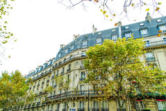 French street in Paris. With amazing plats during daytime Stock Photo