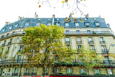 French street in Paris. With amazing plats during daytime Stock Photos