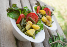 French string bean salad in white dishes Royalty Free Stock Image