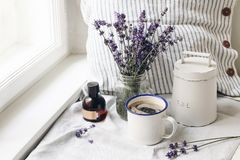 French summer still life. Cup of coffee, lavender flowers bouquet, essence oil bottle on windowsill. Feminine styled stock images