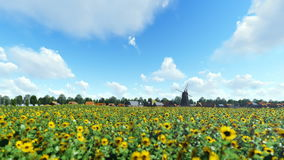 French sunflower village with old windmill against beautiful blue sky stock footage