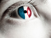 French supporter Royalty Free Stock Image