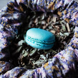 French sweet delicacy mint macaroon Stock Photo