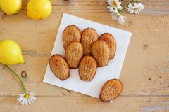 French sweet homemade pastry madeleines with lemon zest. French sweet homemade pastry dessert madeleines with lemon zest, next to lemons and ox-eye daisies on Stock Photos